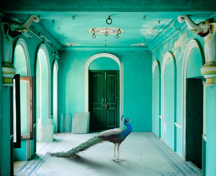 Karen Knorr - The Queen's Room, Zanana, Udaipur, 2010 from the series India Song