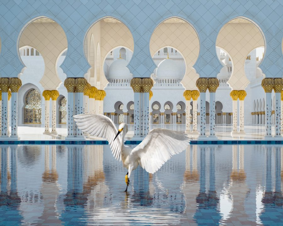 Karen Knorr, The Way of Ishq, Grand Mosque, Abu Dhabi, 2019